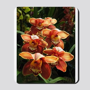 Orange Orchidacea Mousepad