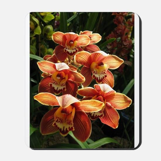 Orange Orchidacea Mousepad