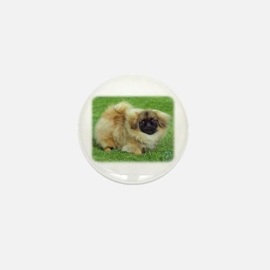 Pekingese 9W045D-034 Mini Button