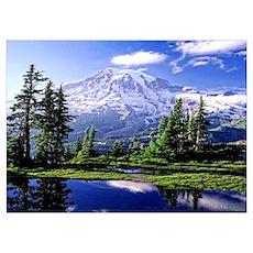 Mount Rainier National Park Poster Wall Art Poster