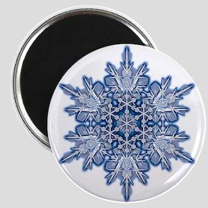 Snowflake 11 Magnet