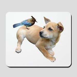 Puppy Jay Mousepad