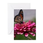 Circle4 Butterfly Greeting Cards (pk Of 10)
