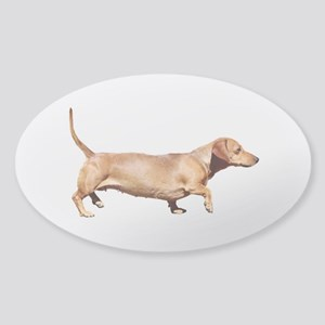 """Dachshund 1"" Sticker (Oval)"