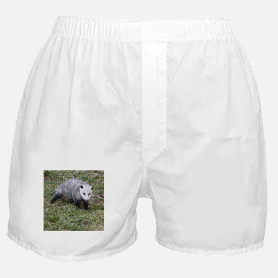 Opossum Boxer Shorts