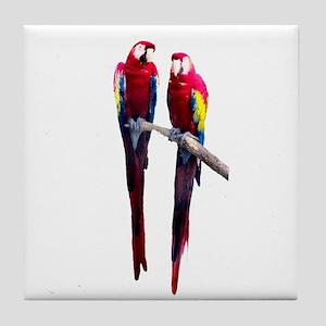 Scarlet (RED) Macaws Tile Coaster