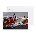 Biplane Greeting Cards (Pk of 20)