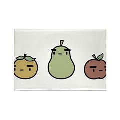 Assorted Fruit Rectangle Magnet (10 pack)