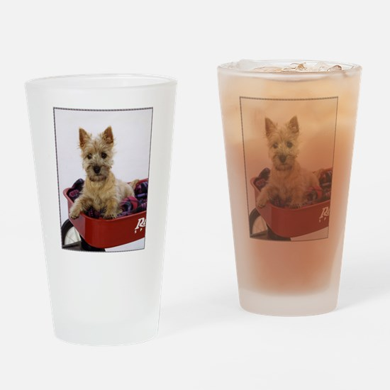 Baby Cairn Terrier Drinking Glass
