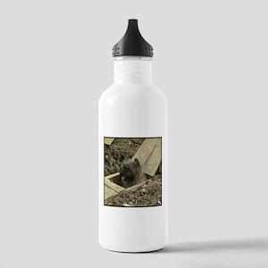 Cairn Terrier Earthdog Stainless Water Bottle 1.0L