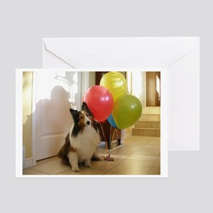 Sheltie Birthday Greeting Card