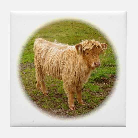 Heilan Coo (Highland Cow) Tile Coaster