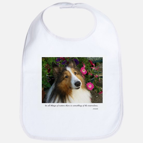 All things in nature Bib