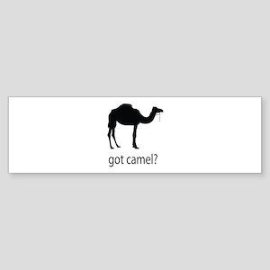 Got camel? Sticker (Bumper)