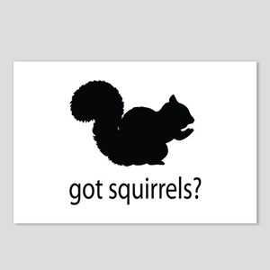 Got squirrels? Postcards (Package of 8)