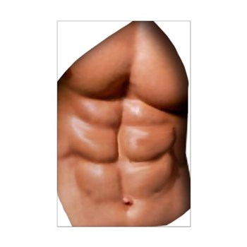 Ripped Abs Mini Poster Print