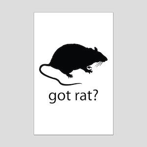 Got rat? Mini Poster Print