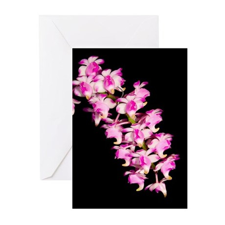 Aer. Punchinello Greeting Cards (Pk of 10)
