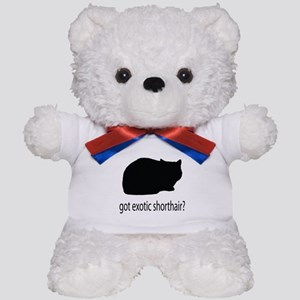 Got exotic shorthair? Teddy Bear