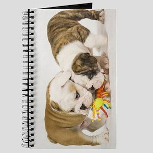 BULLDOG PUPPIES PLAYING Journal