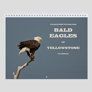 ''Bald Eagles'' Wall Calendar
