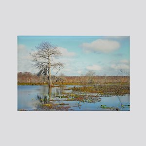 SWAMP VIEW Rectangle Magnet