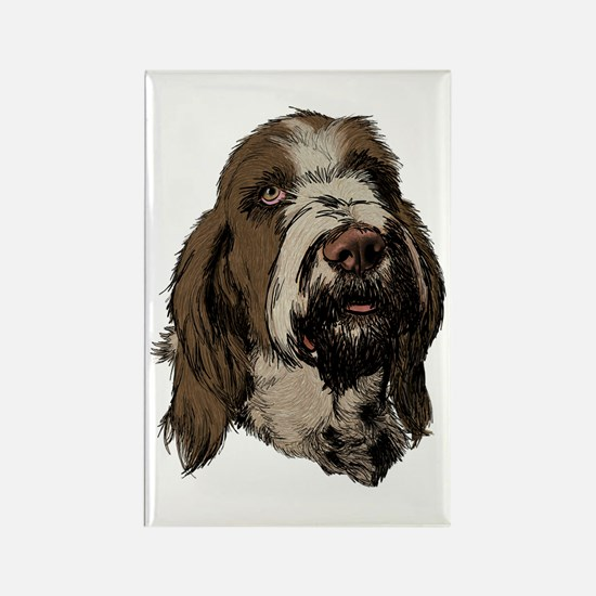 Cute Italian spinone Rectangle Magnet