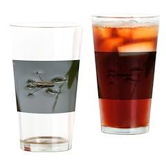 Water Strider Drinking Glass