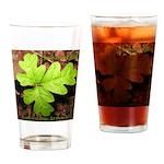 Poison Oak Drinking Glass