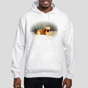 BRIARD GOODIES Hooded Sweatshirt