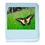 Anise Swallowtail Butterfly baby blanket