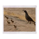 Quail Family Throw Blanket