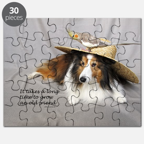 Old Friends Puzzle