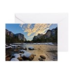 Happy Holidays - Greeting Cards (Pk of 10)