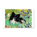 Irises / Pomeranian(bb) Car Magnet 20 x 12