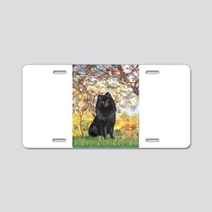 Spring & Schipperke Aluminum License Plate