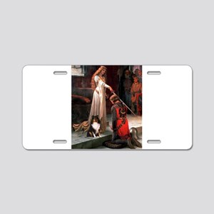 Accolade / Sheltie tri Aluminum License Plate