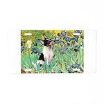 Irises / Toy Fox T Aluminum License Plate