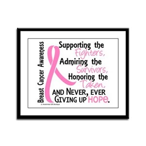 SupportAdmireHonor10 Breast Cancer Framed Panel Pr