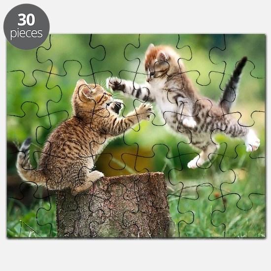 Cool Cat animals Puzzle