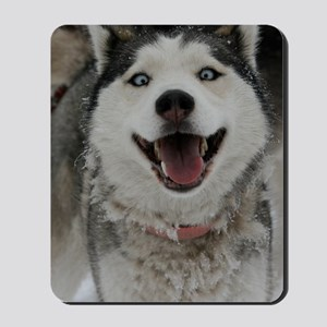 Crazy Aspen Mousepad