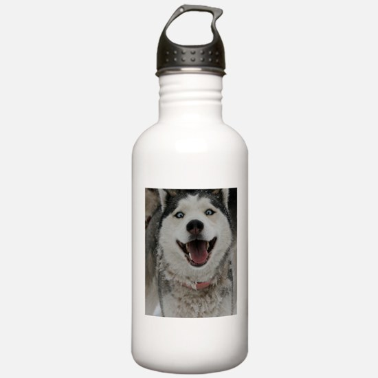 Crazy Aspen Water Bottle
