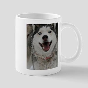 Crazy Aspen Mug