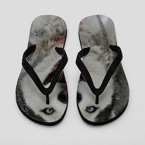 Crazy Aspen Flip Flops