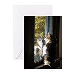 Calico Cat Reflection Greeting Cards (Pk of 10)