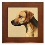 Rhodesian Framed Tile