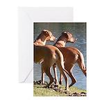 Rhodesian Cards 10PK