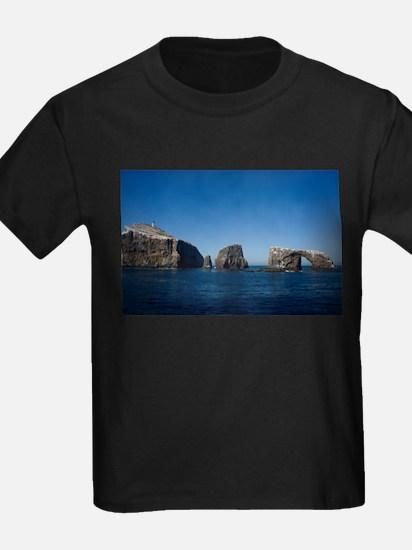 Anacapa Island T