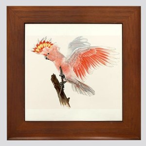 parrot Framed Tile cockatoo