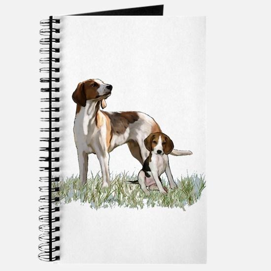 walker coon Hound Journal